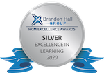 Silver Learning Award Medal